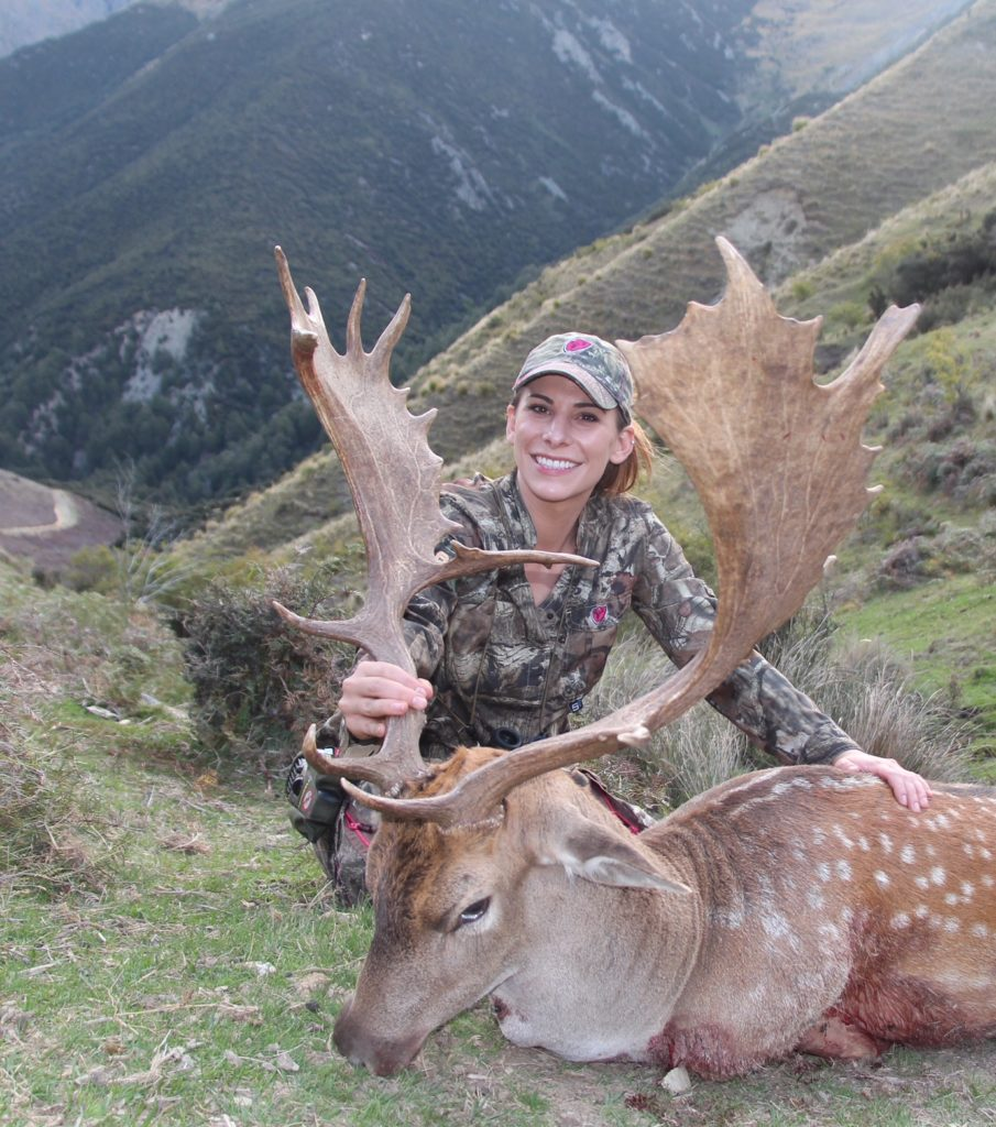 Fallow buck, Glen Dene Hunting & Fishing New Zealand