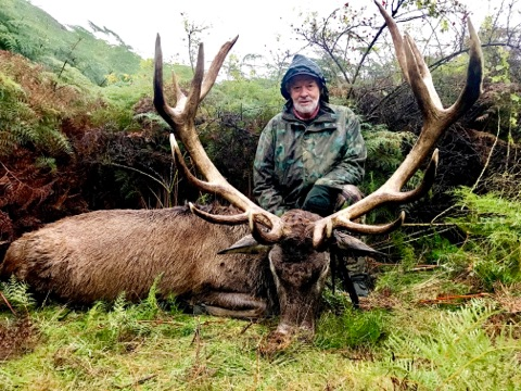 Red Stag Hunts, Glen Dene Hunting & Fishing New Zealand