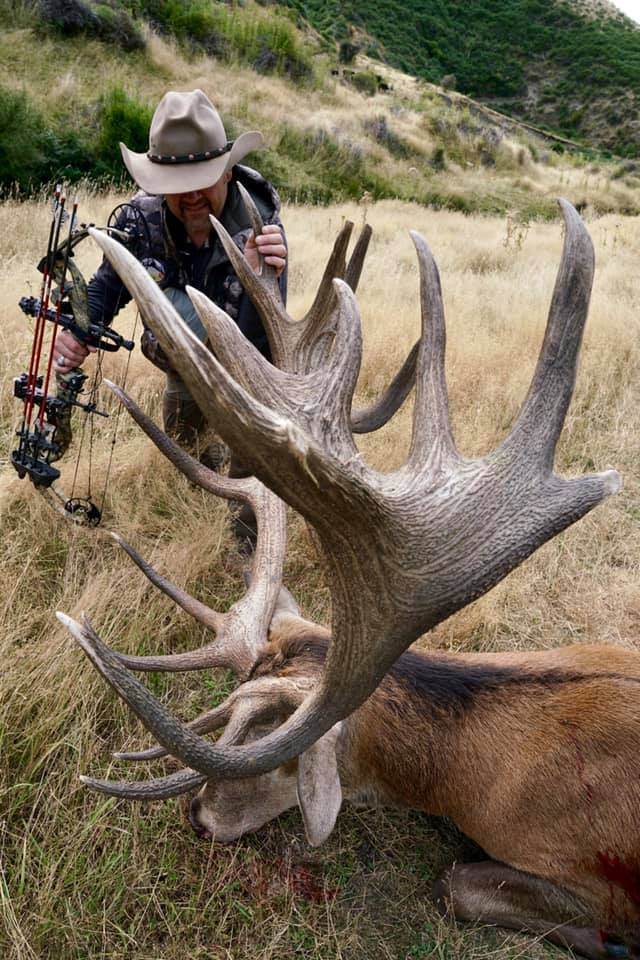 Kevins Red Stag SCI 363