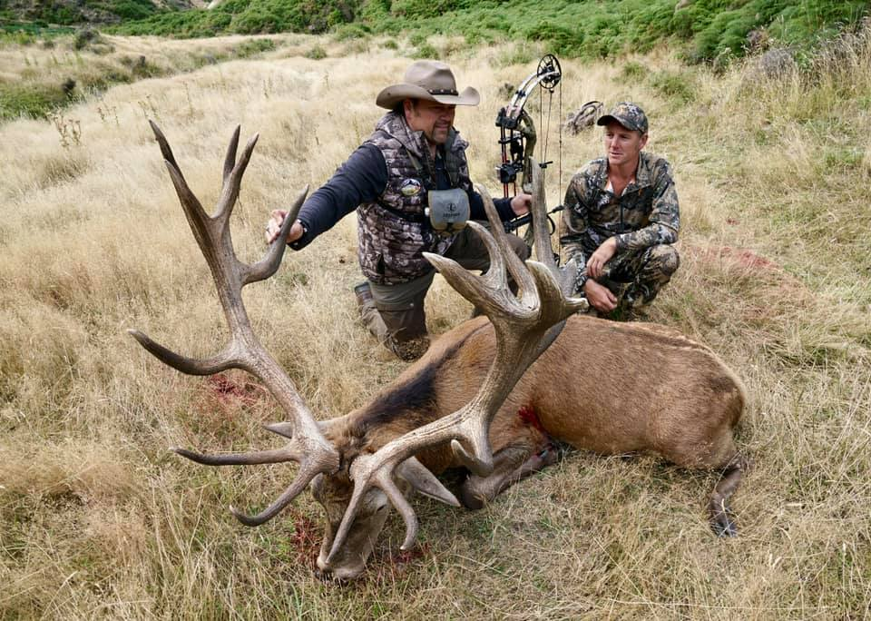 Kevins Red Stag with a bow 2019