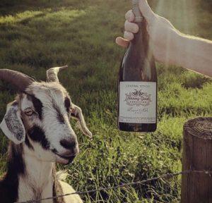 Nanny Goat Winery